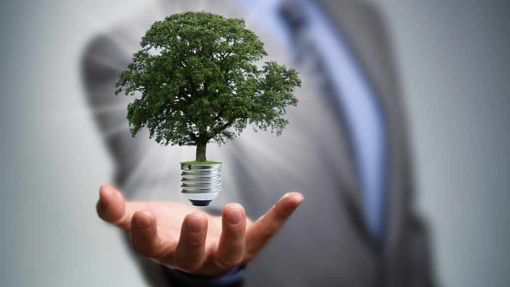 Benefits of Sustainability in Business