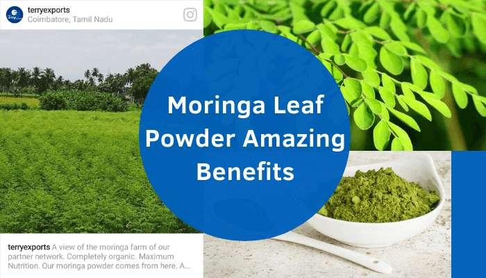 5 Amazing Benefits of Moringa Powder