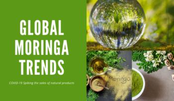 Global Moringa Trends