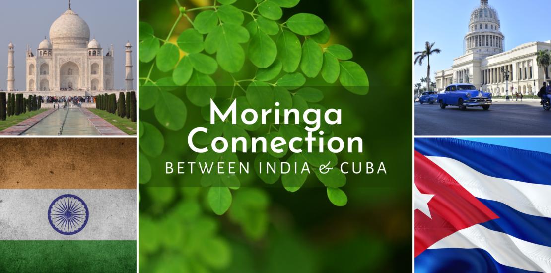Moringa Connection India & Cuba