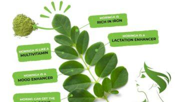 Health benefits of Moringa for women
